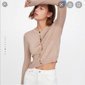 Zara Knit Tan Sweater with Gold Buttons NWT